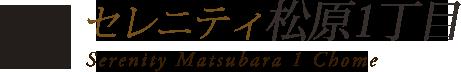 セレニティ野江3